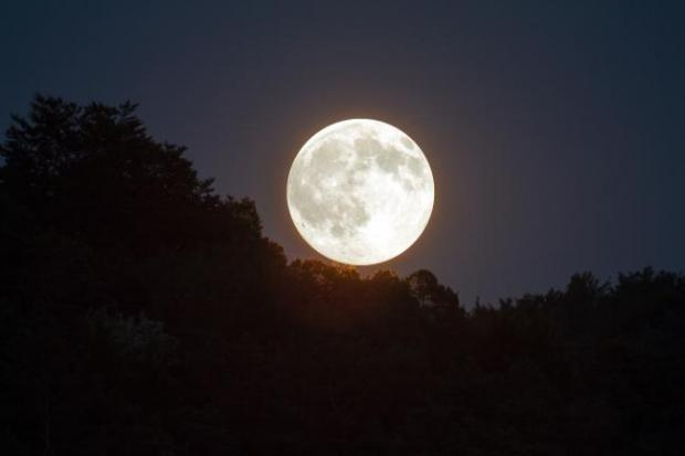 Bucks Free Press: A super snow moon will appear this weekend - and here's how to see it