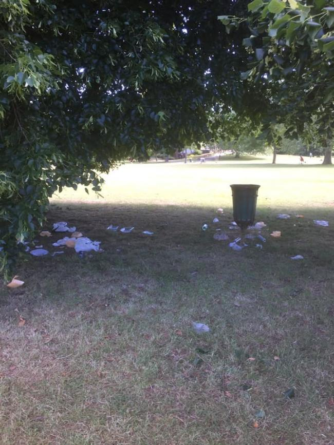 The litter in Higginson Park (photo by Leigh Highgate)