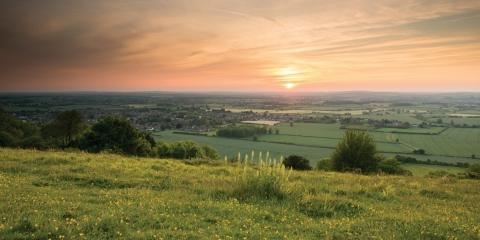 Bucks Free Press: Chinnor Hill (BBOWT)