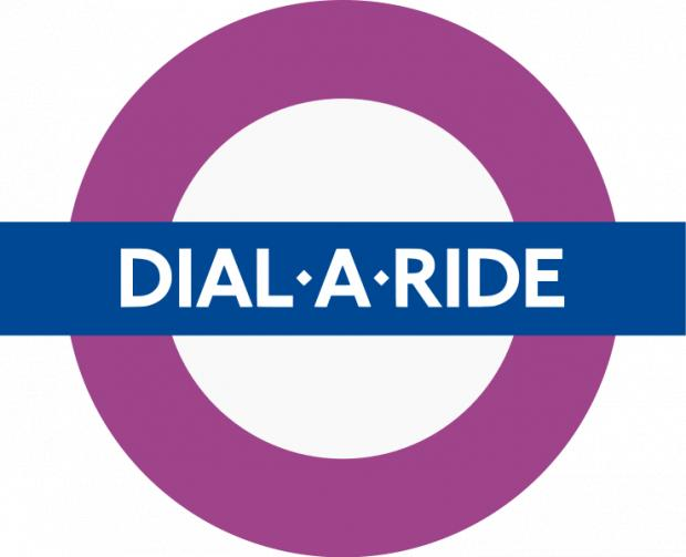 Council cuts grant for Dial-a-Ride service