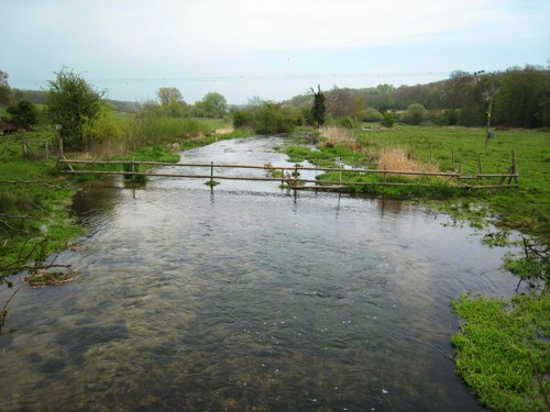 The River Chess at Latimer