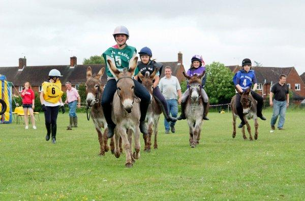 The Donkey Derby last year