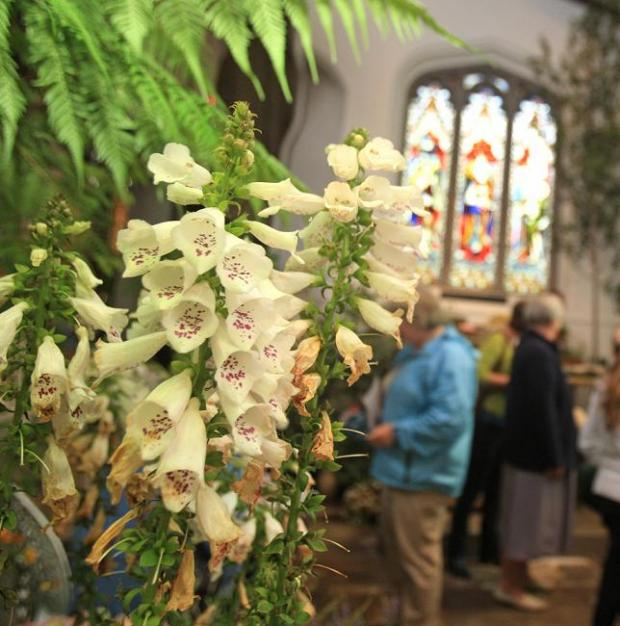 Community news: Hundreds turn out to flower festival