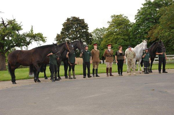 Zulu, Union, Commando, Lochnagar, Remus and Trooper Speaight, 2nd Lt. Holliday, Jeanette Allen (CEO, The Horse Trust), Lt. Col. Richard Pope in the centre