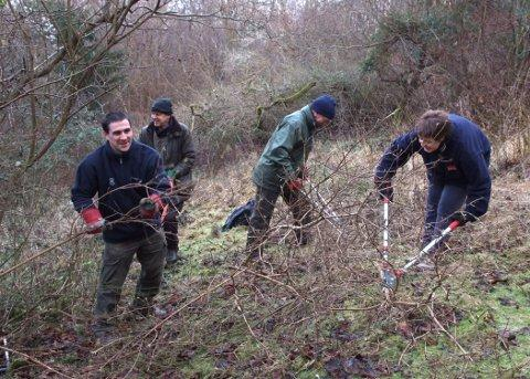 A Brush Hill Nature Reserve work party