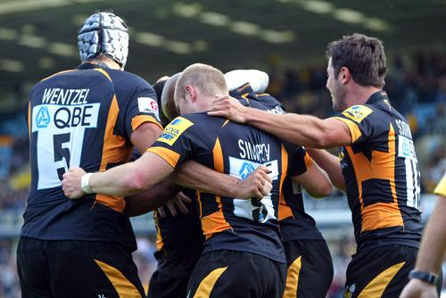 Wasps believe they have turned the corner