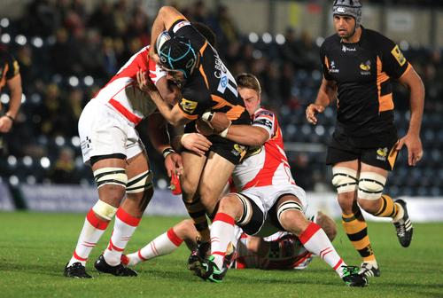 Wasps ran in four tries on Saturday night