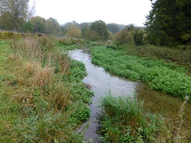 The River Chess near Chesham