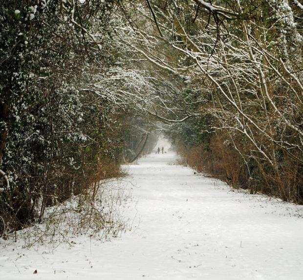 Snow update: Schools announce closure as snow set to continue