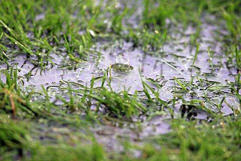 Blues match to undergo pitch inspection