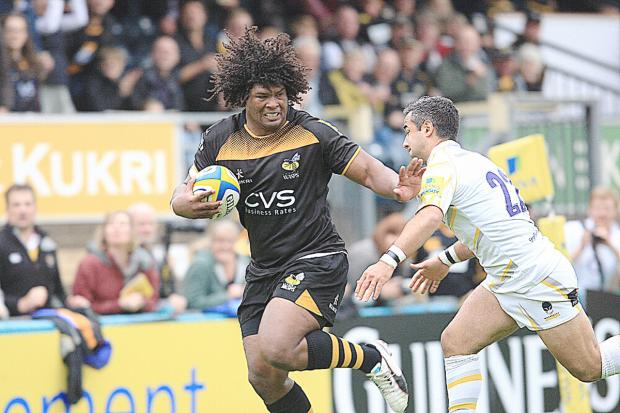 Wasps take on Worcester tomorrow