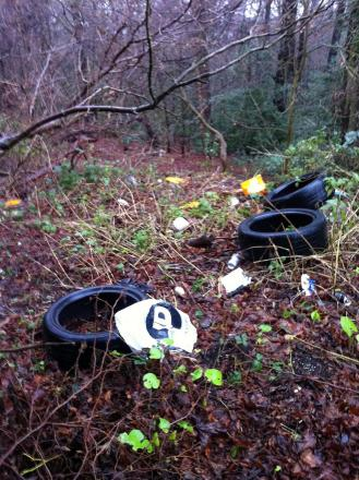 Dog walker calls fly-tipping a hazard at popular woods