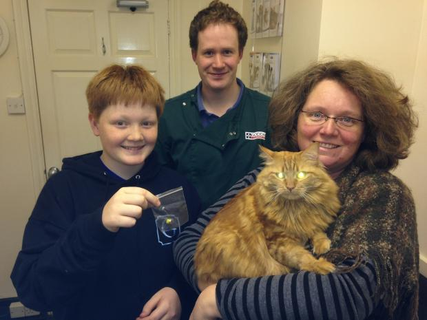 Fluffy with owners and vet
