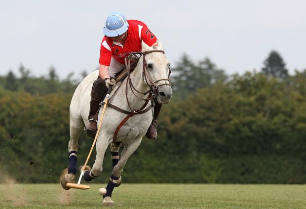 Polo pitch appeal withdrawn at eleventh hour