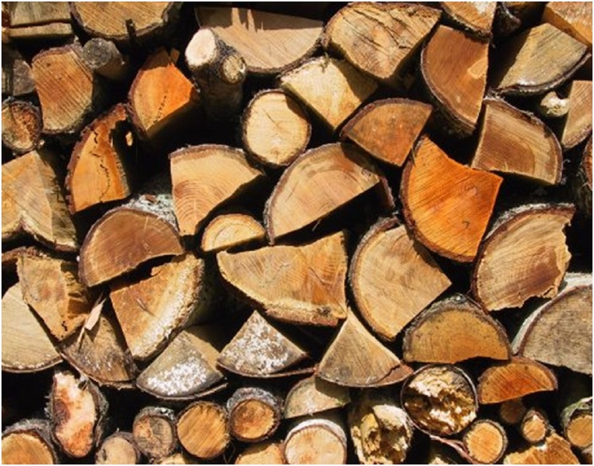 Free wood up for grabs at Wycombe rubbish dump