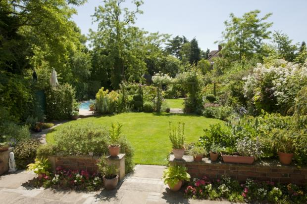 Charity open gardens to treat post-Chelsea blues