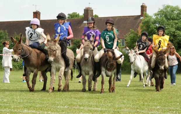 Donkey Derby to gallop back into town