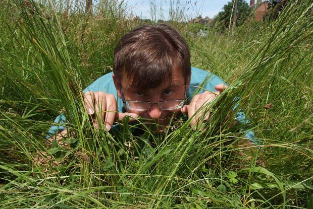 Overgrown grass causing problems in Flackwell Heath