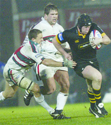 On the run: Wasps flanker Tom Rees wants to play for England