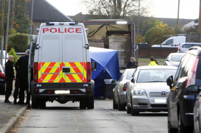 Devastated neighbours relive tragic moment lorry driver was crushed to death in quiet road