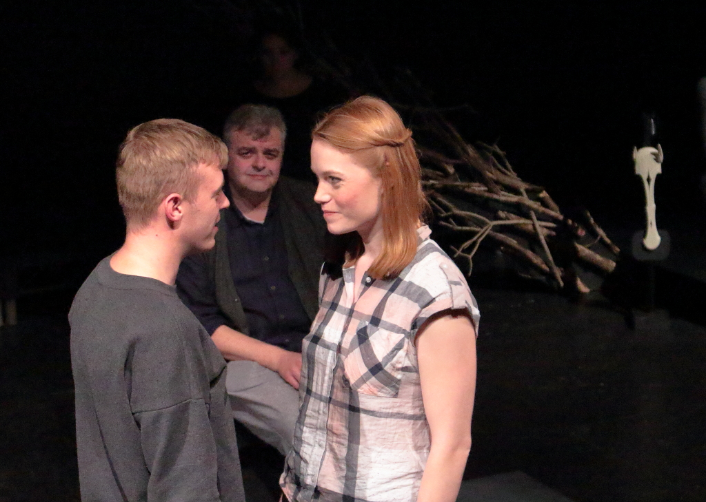 REVIEW: 'Theatre company stages a winner' with Equus