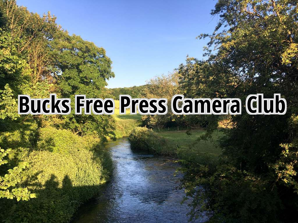 clubs Amateur for photographers camera amateur
